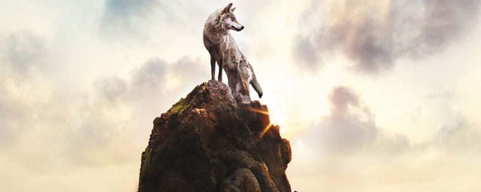 Le dernier loup - Soundtracks